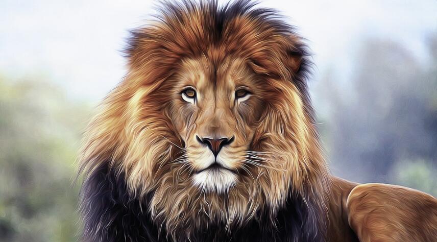狮子记忆法