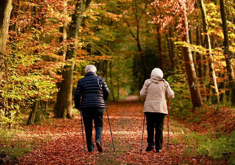 尊老爱老要培养孩子的爱心、责任心和感恩的心